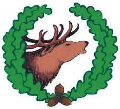 Logo Starościn